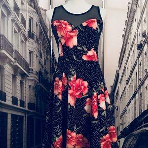 🆕 En Focus Studio polka-dot & floral A-line dress